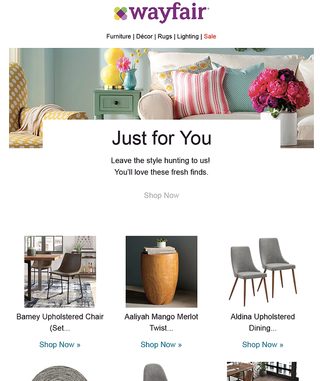 Wayfair Personalized Email