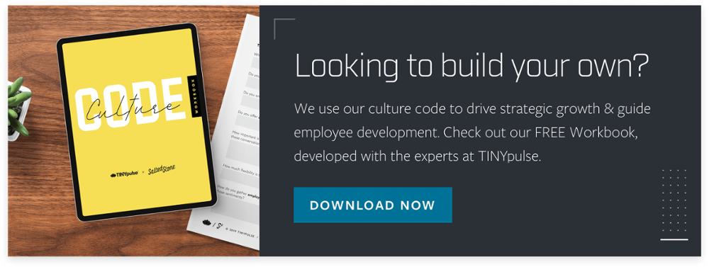 Download the Culture Code Workbook